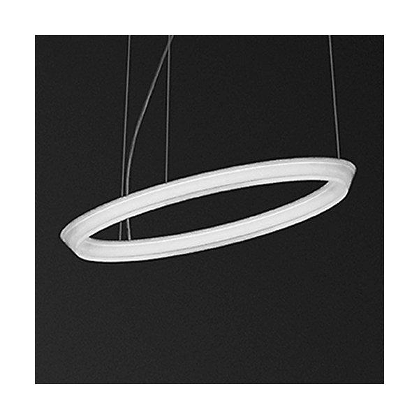 Halo Circular Single LED Pendant Light