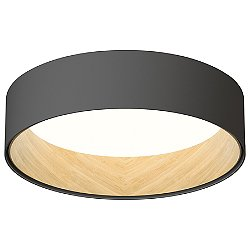 DUO Surface Flush Mount Ceiling Light