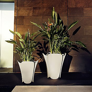 Small and Medium Pezzettina Planters, side by side