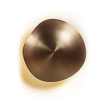 Chestnut LED Wall/Ceiling Light