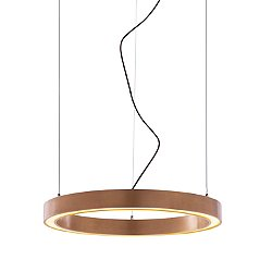 Ring LED Pendant Light