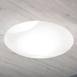 Lio Wall Sconce