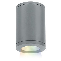"Tube Architectural 5"" Bluetooth Color Changing Ceiling Mount"