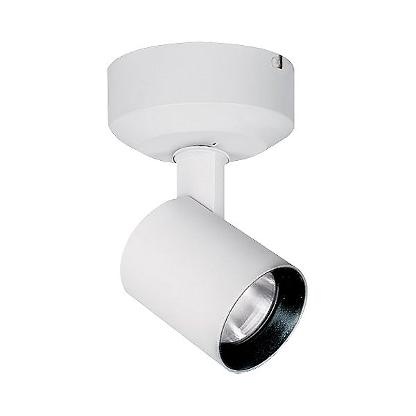Lucio 10W LED Spotlight