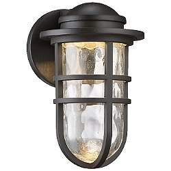 Steampunk dweLED Indoor/Outdoor Wall Light