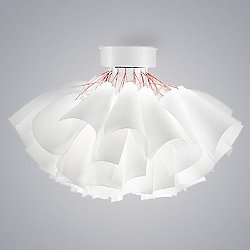 Tutu Ceiling Light
