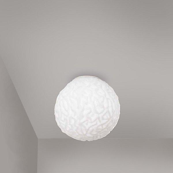 Emisfero Wall / Ceiling Light