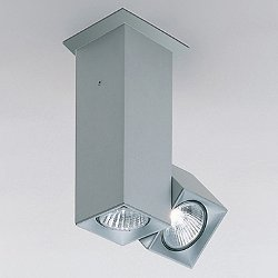 Dau Spot Light Flush Mount Ceiling Light
