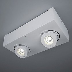 Bridge LED 2-Light Flush Mount Ceiling Light