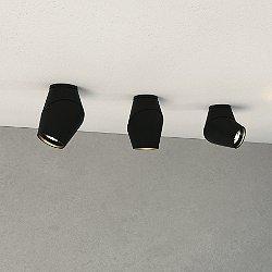 Vital LED Wall/Ceiling Light