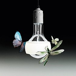 Johnny B. Butterfly Pendant Light