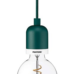 Deneb Drop Cap Pendant Light