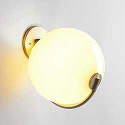 Fiddlehead Wall Sconce