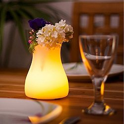 Olio Bluetooth LED Indoor/Outdoor Lamp