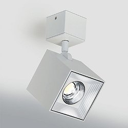 Dau Spot Semi-Flush Mount Ceiling Light / Wall Light
