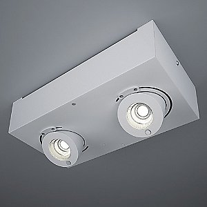 Bridge LED 2-Light Flush Mount Ceiling Light by ZANEEN design