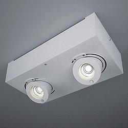 Bridge LED 2-Light Flush Mount Ceiling Light