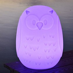 Owla LED Table Lamp