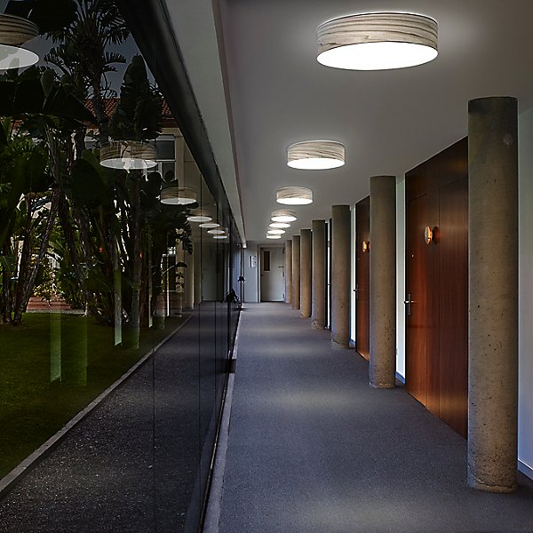 Gea Wall/Ceiling Light