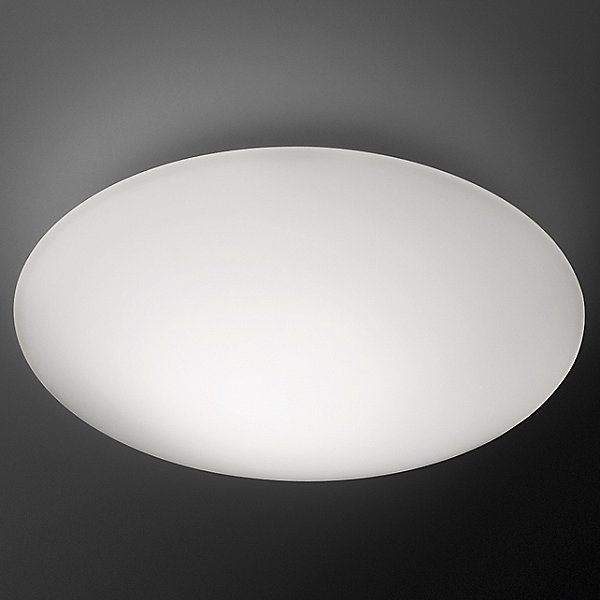 Puck Light Wall or Ceiling Light