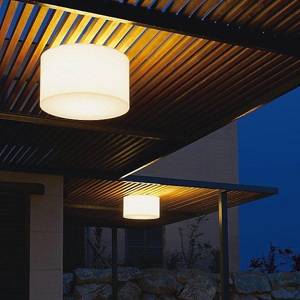 Harry Ceiling Light
