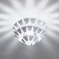 Agave Ceiling Light
