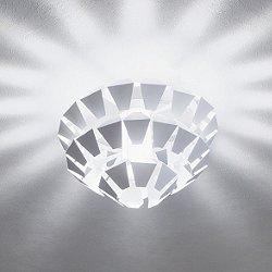 Agave Ceiling Light