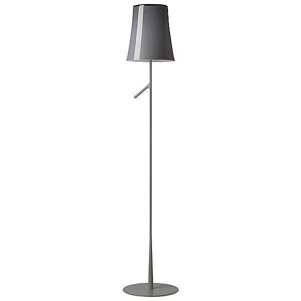 Birdie Reading Floor Lamp