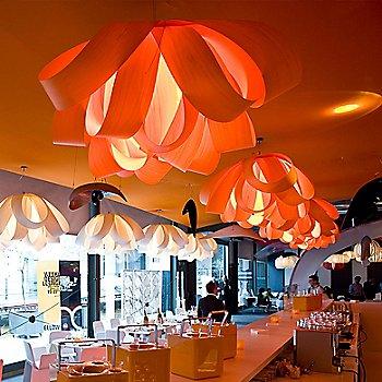 Orange Shade, illuminated