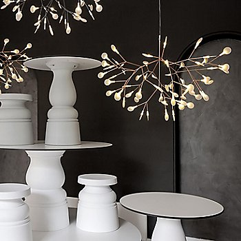 Heracleum II Pendant Light, in use