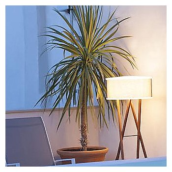 Cala 140 Outdoor Floor Lamp / in use