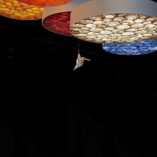 Spiro Pendant Light