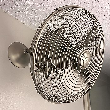 Kaye Wall Fan