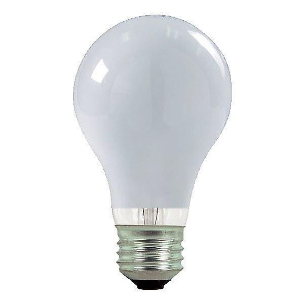 43W 120V A19 E26 White Halogen Bulb (2-PACK)