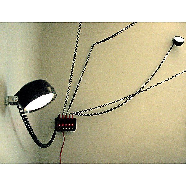 This Is Not a F****** Droog Light Light