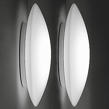 A pair of Bis in Large (sold seperately)