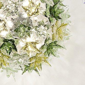 Transparent Mint / Detail view