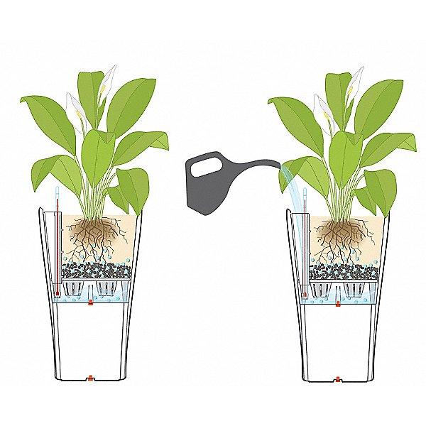 Delta 40 Self Watering Planter