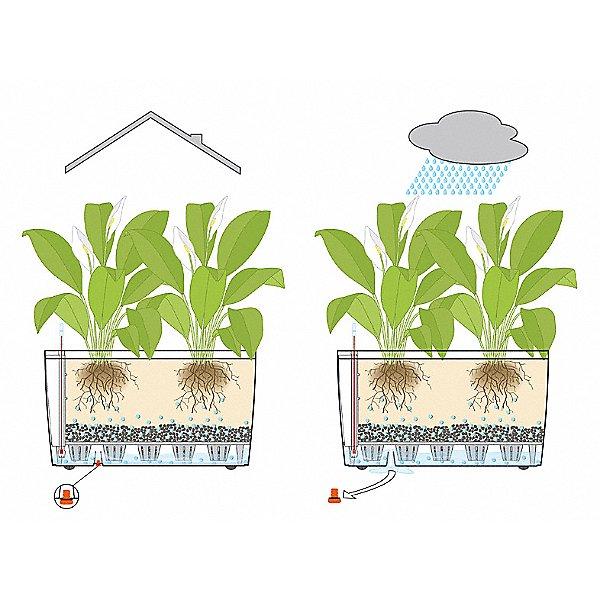 Cararo Self Watering Planter