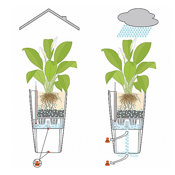 Cubico 30 Self Watering Planter